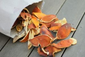 dryed Orange peal